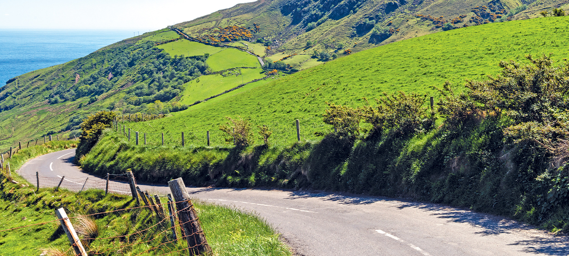 Country Roads of Ireland - Insight Guided Vacations