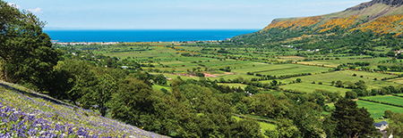 Ireland-Blog_Landscapes.jpg